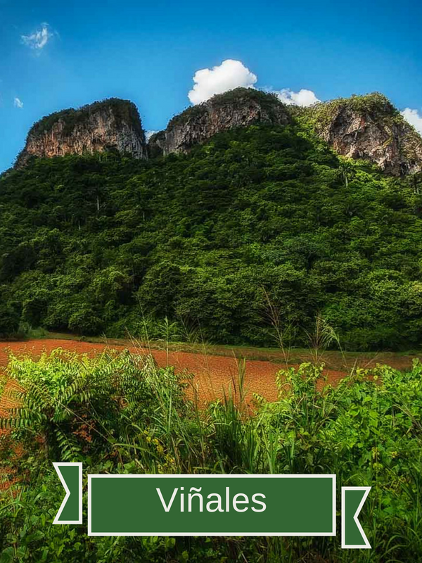 Travel Cuba - Viñales | While Cuba has several national parks, none is so beautiful and accessible as the one located in the Viñales Valley. Viñales is known as a stunning destination, and history tells that it was Castro's favorite place on the island. The valley is surrounded by mountains, tobacco still grows to manufacture iconic Cuban cigars and countless caves add an extra ounce of adventure for the intrepid traveler. One of the most popular caves is the Cuevas del Indio, or Indian Caves, where you can actually take a boat ride completely within the cavern system itself.