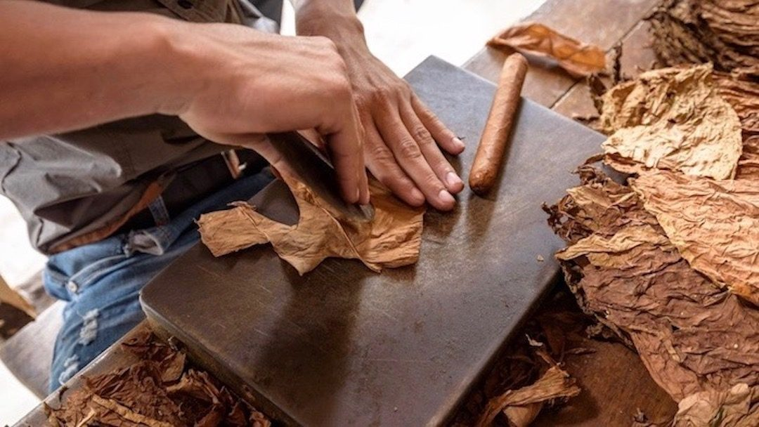 Cuban Cigars – The Basics